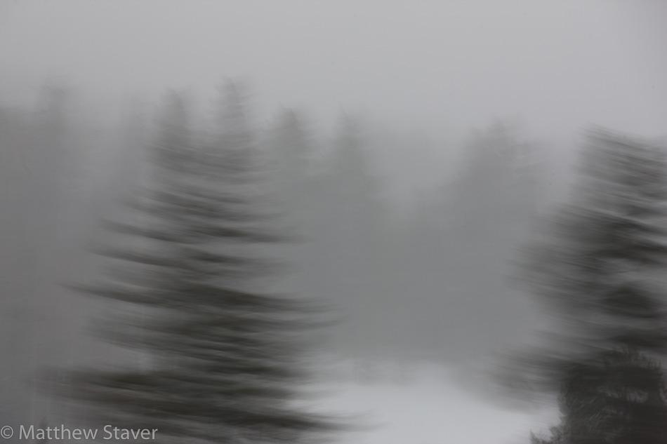 Staver_Landscape_01