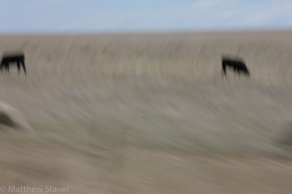Wyoming_photographer_Staver-2