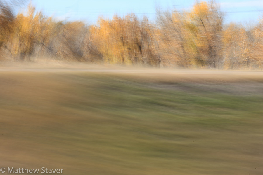 Staver_colorado_fall