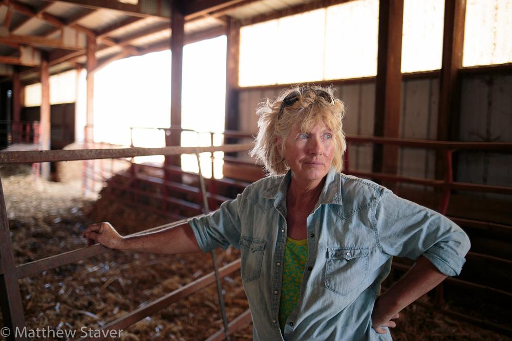 Portrait 3 of Colorado Rancher